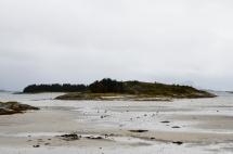 Øyene og Sitkagran