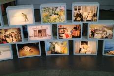 Lysbokser/ arkivbilder Vibeke Steinsholm